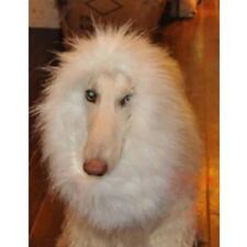Large Dog Lion Wigs Mane Hair Dress Clothes Costume Divine Halloween White M AD