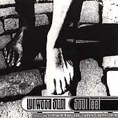 Soul Feet by Lynwood Slim (CD, Sep-1996, Atomic Theory) XLNT blues hamonica/more