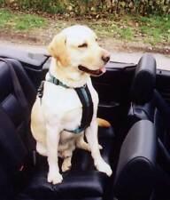Softex Dog Car Safety Harness