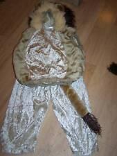 Baby Size 24 Months Lion Halloween Costume Vest & Pants EUC