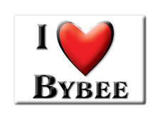 SOUVENIR USA - TENNESSEE FRIDGE MAGNET AMERICA I LOVE BYBEE (COCKE COUNTY)