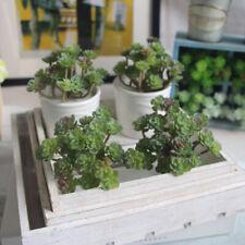 1 Pc Simulation PVC Succulents Artificial Plants Home Office Garden Decoration