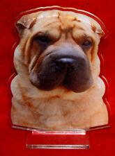 statuette photosculptée chien shar pei 2 dog hund estatua perro statua