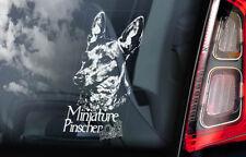 Miniature Pinscher on Board - Car Window Sticker - German Dog Sign Decal - V02