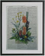 Australian Native Flowers Print No.67, dictionary art, banksia, wattle