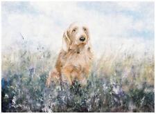 BASSET FAUVE de BRETAGNE DOG ART LIMITED EDITION PRINT