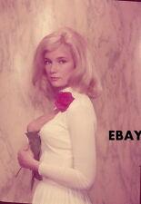 Yvette Mimieux 5 X 7 Vintage Color Transparency  circa 1960