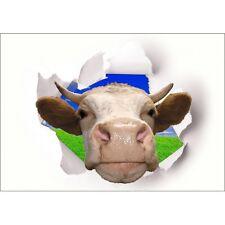 Sticker Trompe l'oeil Tête de Vache Tête de Vache