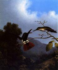 BLACK THROATED MANGO HUMMINGBIRD BUTTERFLY FLOWERS MARTIN JOHNSON HEADE REPRO