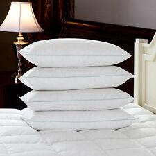 LUSSO Piuma D'AnAtrA & Down anallergico Qualità Hotel Extra riempito i cuscini