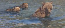 """Gone Fishing"" Daniel Smith Fine Art Giclee Canvas - Alaskan Brown Bear"