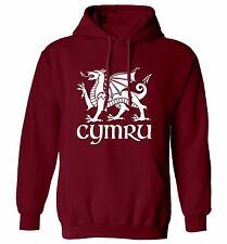 Cymru hoodie sweater Welsh dragon wales St David's day football proud flag 1483