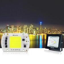 IC Driver Lamp Light Floodlight 20W/30W/50W 220V Input Smart Traffic Sale Hot