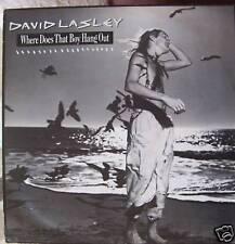 "DAVID LASLEY Where Does That Boy Hang.. 12"" Single PS"