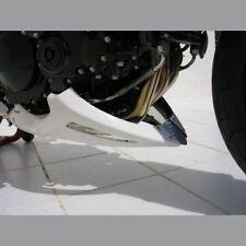 Sabot moteur Ermax SPEED TRIPLE 1050 2005/2010 brut