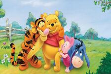 189344 Winnie the pooh Wall Print Poster CA
