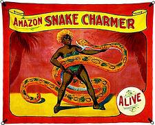 1960's Carnival Sideshow - ALIVE - Amazon Snake Charmer - Poster