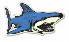 Shark Drawing Design Car Vinyl Sticker - SELECT SIZE