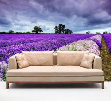 3D Lavendel 5672821  Fototapeten Wandbild Fototapete BildTapete Familie DE