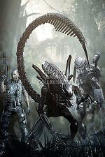 RGC Huge Poster - Aliens vs Predator PS3 XBOX 360 - OTH110