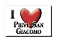 CALAMITA LOMBARDIA FRIDGE MAGNET MAGNETE SOUVENIR LOVE PIEVE SAN GIACOMO (CR)