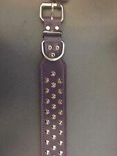Allpet Staffy Studded Leather Dog Collar Purple