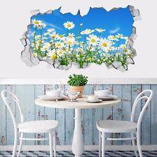 3D Sky Daisy Flowers 99 Wall Murals Wall Stickers Decal breakthrough AJ WALL CA