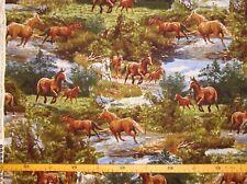Patchworkstoff (€20/m²)  Pferde Wildpferde 1,1m breit