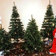 Weihnachtsbäume Tannenbaum Leuchtbaum Weihnachten Winter Licht Dekoration grün