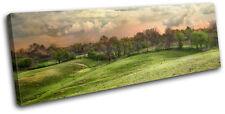 Landscape Countryside Field Canvas Art Picture Print Decorative Photo