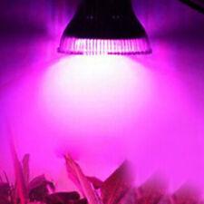 Hydroponic, Hydroponik, LED Pflanzlicht, Pflanzenleuchte, Growlight