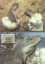 Turks & Caicos 1986 Mi MK 777-80 WWF Animals Tiere Pets Zwierzęta Iguana Legwan