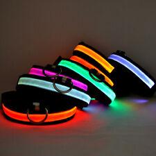 SAFETY LED Dog Pet Light Up Collar Night Glow Adjustable Bright 6 Color Leash