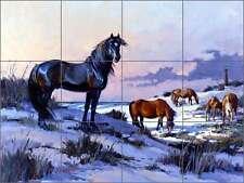 Ceramic Tile Mural Backsplash Senkarik Horses Equine Corolla Lighthouse MSA047