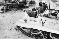 WW2 - Tunisie 1943 - Bren-Carrier Lègion Etrangère de la France Libre