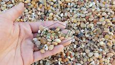 Aquarium Natural Beach Gravel (Medium) for fish shrimp tank Free Shipping