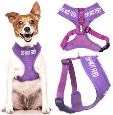 DO NOT FEED Purple Padded Waterproof Cute Dog Vest Harness or 4 6 Foot Lead Sets