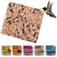 Wild Bird Suet Cake 11.25 oz All Season Food Treat Heath Outdoor Products Choose
