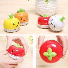 New Fruit Vegetable Timer Mini Kitchen Special Timer Reminder Alarm Clock US