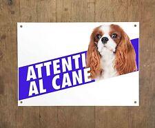 CAVALIER KING CHARLES SPANIEL 1 Attenti al cane Targa cartello metallo