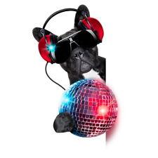 63961 dog Disco ball Wall Print Poster AU