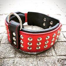Vero cuoio fatto a mano cane collare, con borchie, 6.3cm largo M- XL