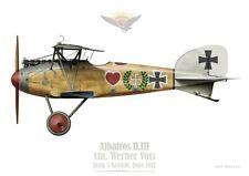 Print Albatros D.III, Ltn Werner Voss, Jasta 5, 1917 (by D. Douglass)