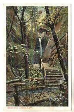 Shanklin Chine - Photo Postcard c1902