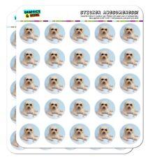 Soft-Coated Wheaten Terrier Sunglasses Planner Calendar Scrapbooking Stickers