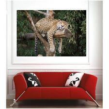 poster poster leopardo 9724333 Art déco Adesivi
