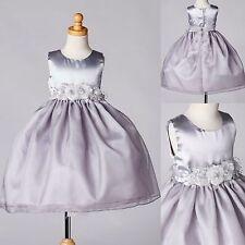 Silver Organza & Satin Girls Dress Holiday Formal Wedding Recital Christmas #35