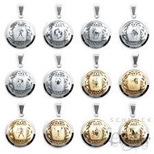 Edelstahl Anhänger Sternzeichen Tierkreiszeichen gold oder silber + 60cm Kette