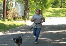 Single 8 Ft Hands Free Dog Leash Cycling, Jogging 1 Year Warranty