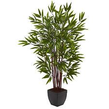 "4"" Bamboo Silk Tree w/Planter"